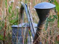 wateringcan200