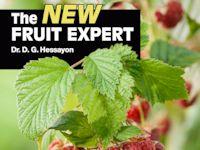 NEW FRUIT EXPERT_FC